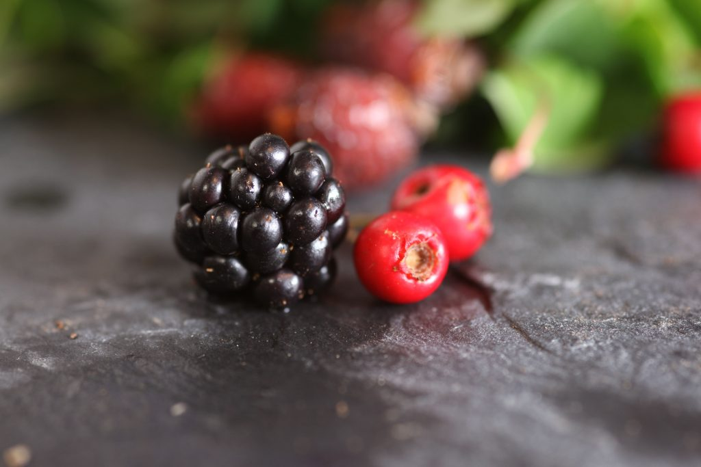 Blackberry and Rosehips