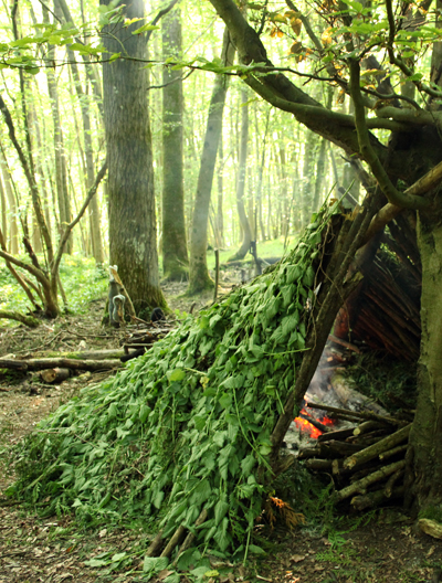 Natural shelters, bushcraft shelter